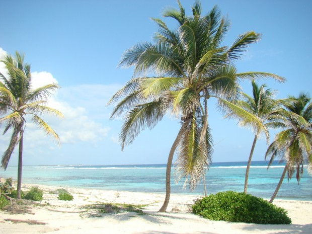 Grand Cayman Islands  - British West Indies